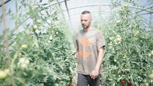 Le panier de légumes: sain, durable et créateur de lien social
