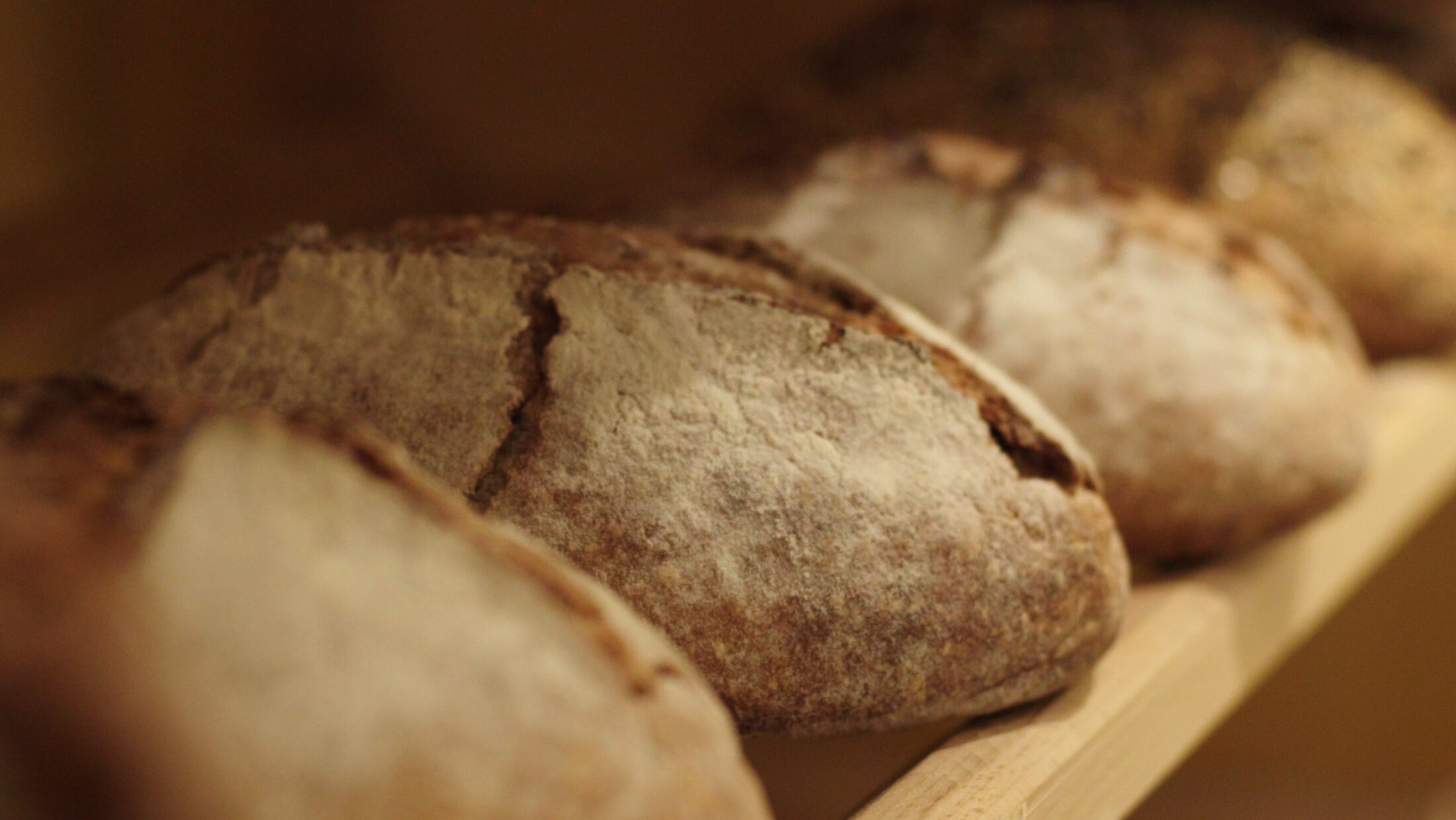 Getting involved through local artisanal organic bread