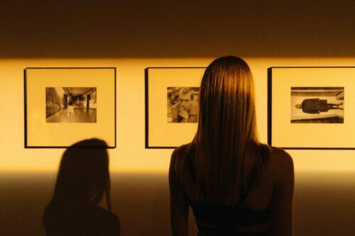 Des expositions temporaires fascinantes à ne pas manquer